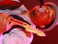 91-5-fm-phuket-international-blues-rock-festival-2012_0015