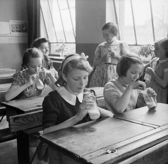 School Days Challenge when was milk abolished in schools.