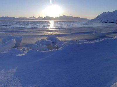 Can AI predict Arctic ice loss?